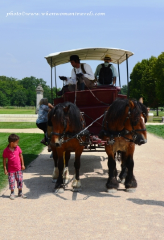 Horse carriage tour in Chambord Castle France
