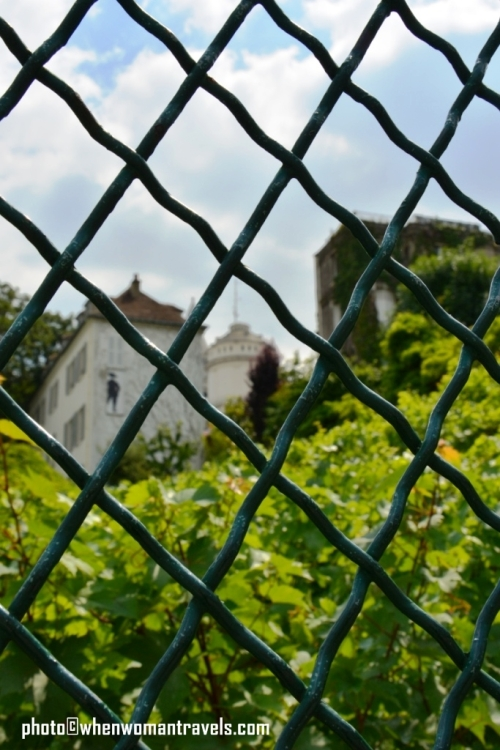 Montmartre_Wineyard_22