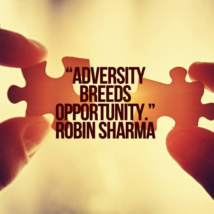 Robin Sharma quote
